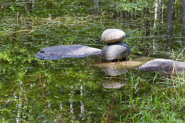 Bedrock Gardens reflection