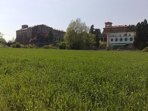 Il grano dell'isola Borromeo by durishti