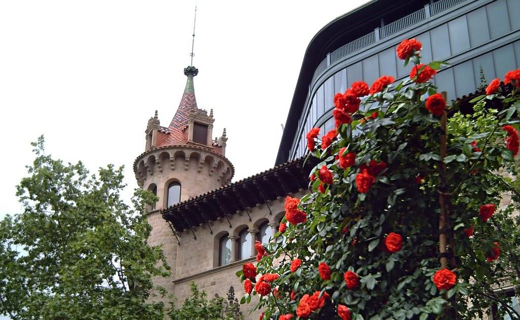 Barcelona photoblog sant jordi patron of catalonia for Piscinas sant jordi barcelona