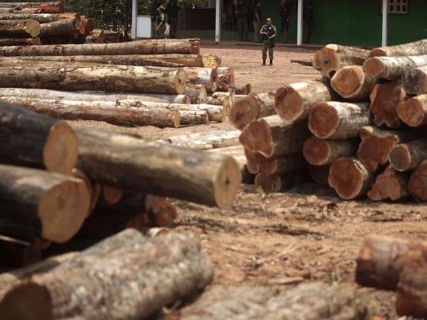 Agentes do Ibama inspecionam madeira ilegal apreendida na reserva indígena do Alto Guama, em Nova Esperança do Piriá (PA). Os fotógrafos Nacho Doce e Ricardo Moraes, da Reuters, viajaram pela Amazônia registrando formas de desmatamento. Foto de 25/9/2013. (Foto: Ricardo Moraes/Reuters)