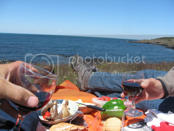 picnicking on brier island nova scotia