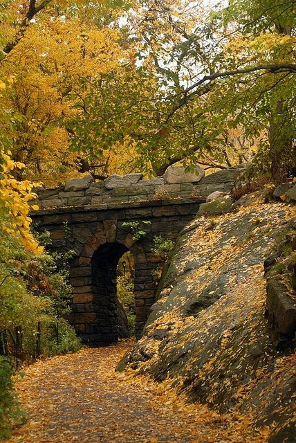 I always love to see the old covered one lane bridges.  Autumn Arch, Central Park, NYC