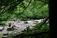 Echo Lake  Hike 7/5/08