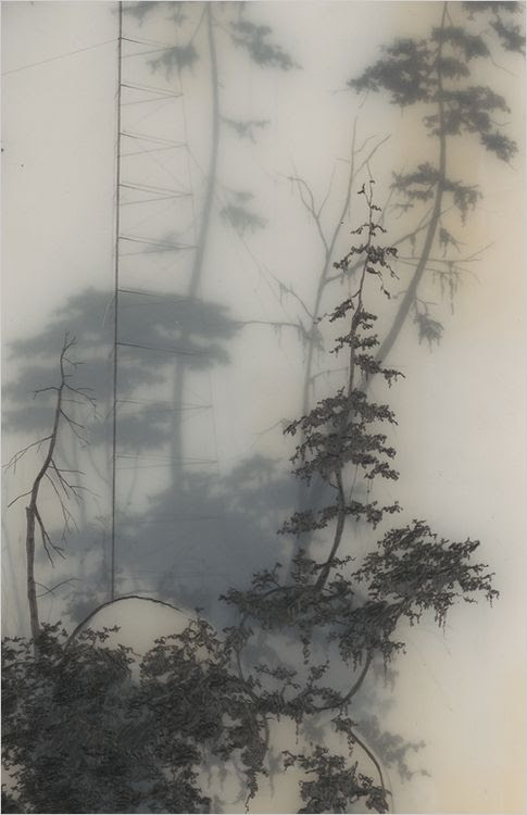 graphite art 25