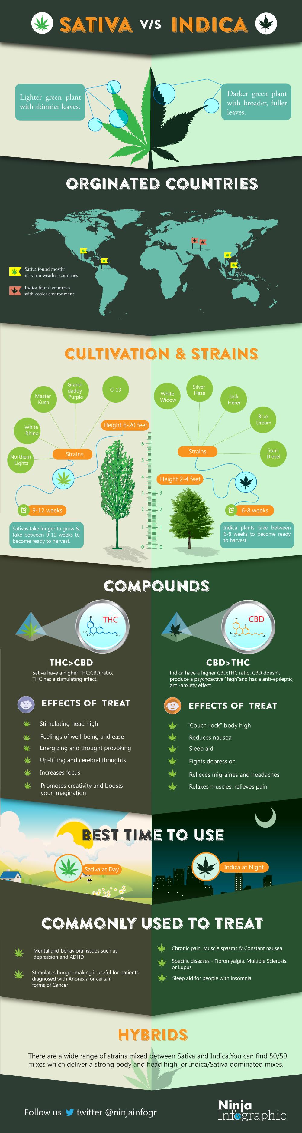 Infographic: Sativa vs Indica #infographic