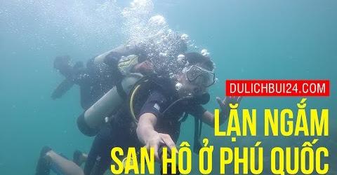 Du lịch Phú Quốc - Kinh nghiệm lặn ngắm san hô bằng bình khí ở Phú Quốc