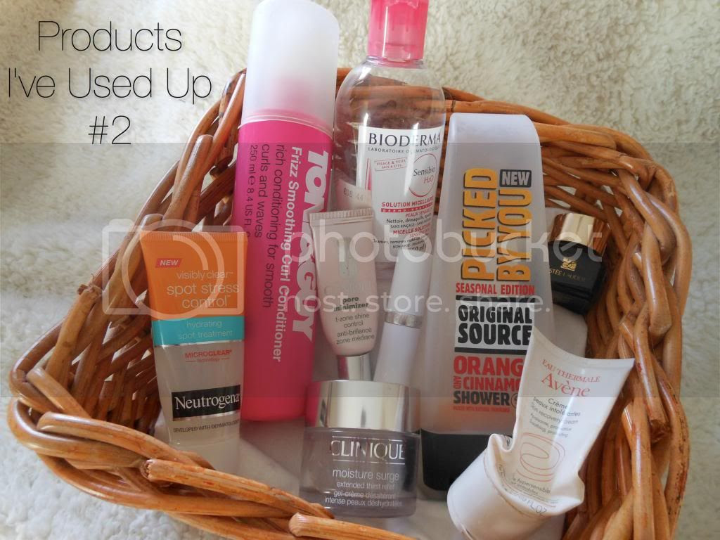 Beauty Blog Review Products Used Up
