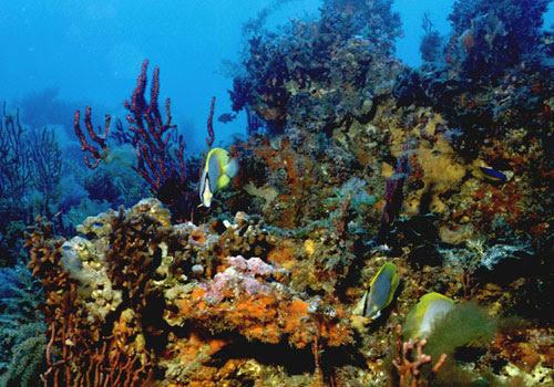 Hurghada - Egito