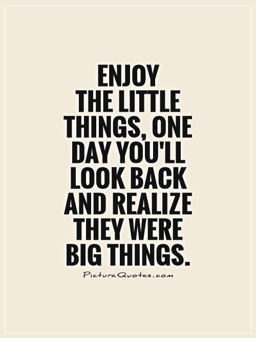 Quotes About Enjoy The Little Things 67 Quotes