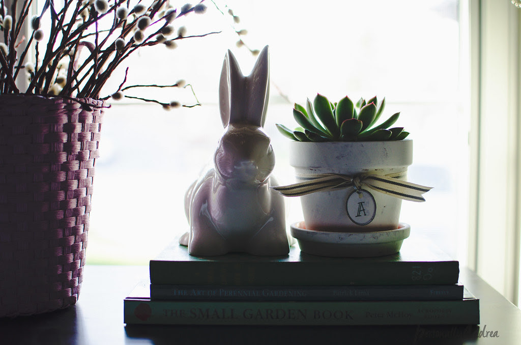DIY Shabby-Chic Succulent Pots | personallyandrea.com