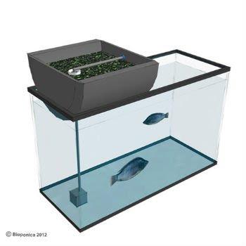 aquarium biogarden
