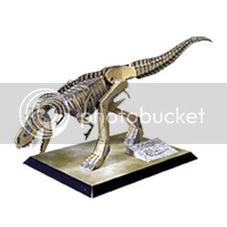 T Rex Dinosaur Skeleton