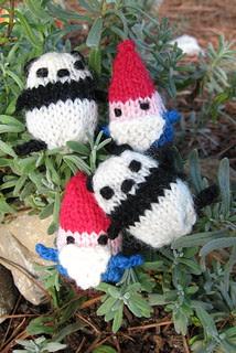PandaGnomeum