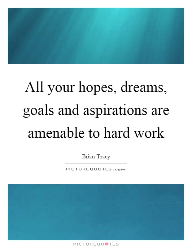 All Your Hopes Dreams Goals And Aspirations Are Amenable To