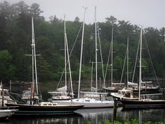 Acadia Boats