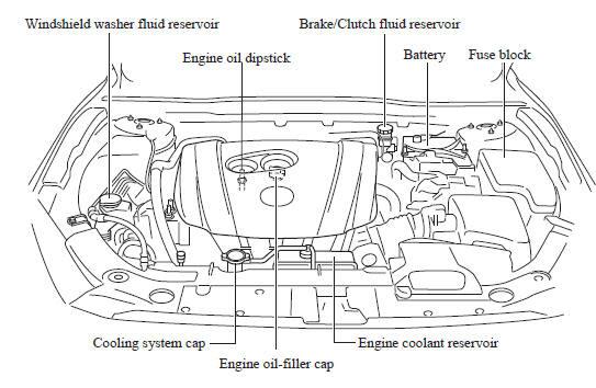 Mazda 3 Owners Manual Closing The Hood Hood