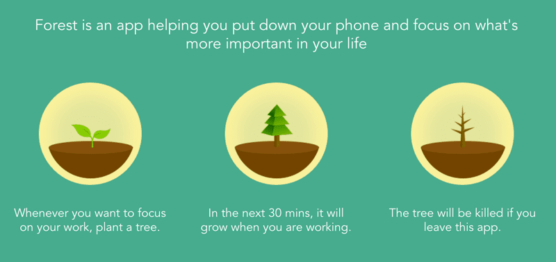 Forestapp productivity