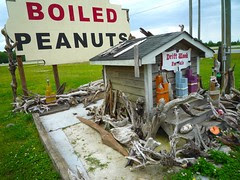 boiled p-nuts 1
