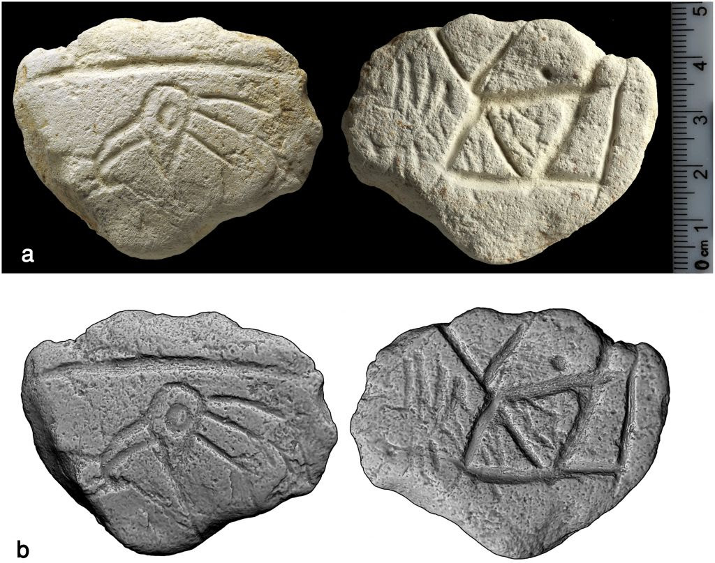 A 16,500-year-old limestone palette engraved with a bird's head found at Ein Qashish in northern Israel. ( CC BY, PLoS ONE; A Unique Assemblage of Engraved Plaquettes from Ein Qashish South, Jezreel Valley, Israel: Figurative and Non-Figurative Symbols of Late Pleistocene Hunters-Gatherers in the Levant)