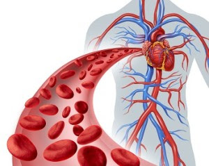 Genetic High Cholesterol