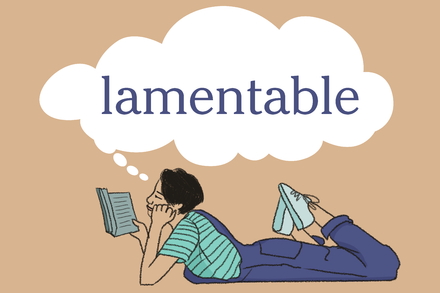 Word of the Day: lamentable