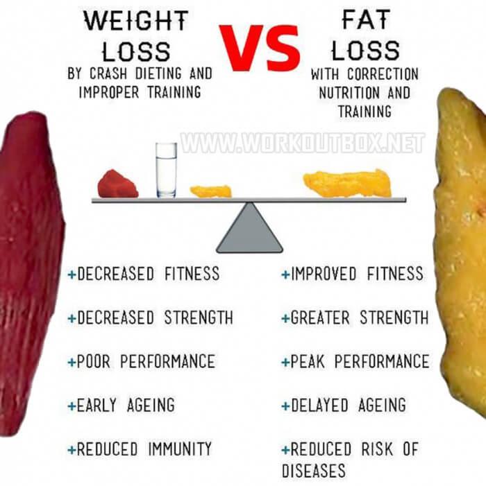 Fat Loss Diet Vs Weight Loss Diet