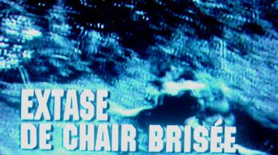 Extase De Chair Brisee