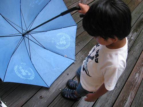 Looking Down on Umbrella