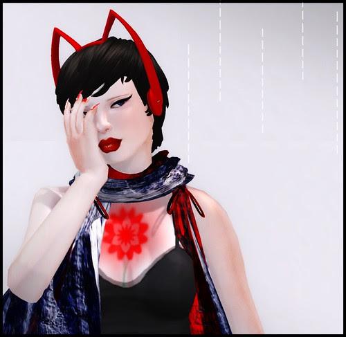 red cat_009