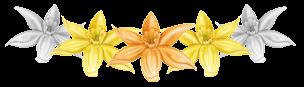 vanilla-rating-3-stars