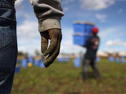 Los hipanos representan el 27,8% de los pobres en Estados Unidos. Foto: AFP