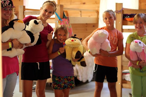 pillow pet gang