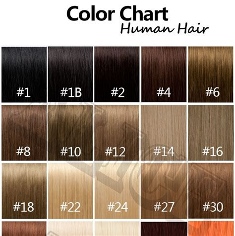 human hair color chart extensions  colors hair colour chart human hair color ring hair