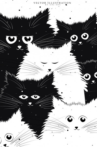 Koleksi 930  Gambar Animasi Kucing Hitam Putih  Paling Keren