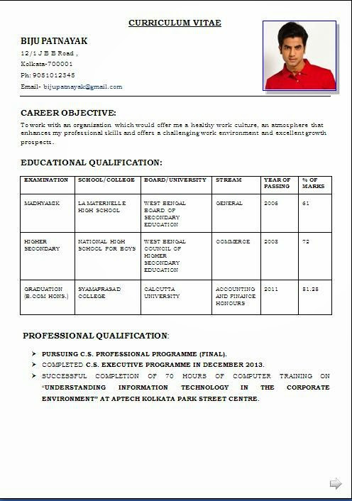 Best Cv Format Pdf Download Best Resume Examples