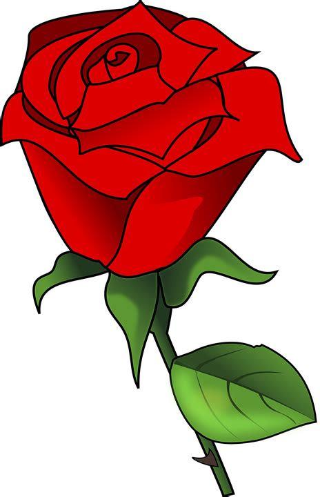gambar bunga vector png pickini wallpaperzenorg