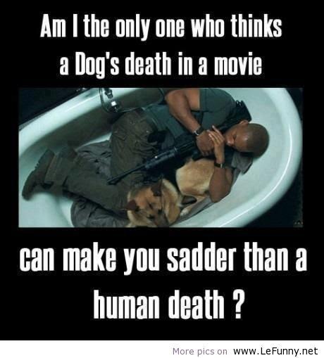 Dog Death Quotes. QuotesGram