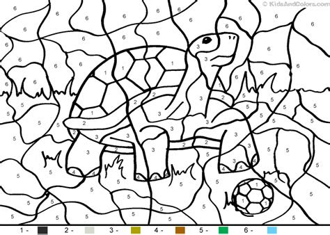 animalcolorbynumber color  number soccertortoise