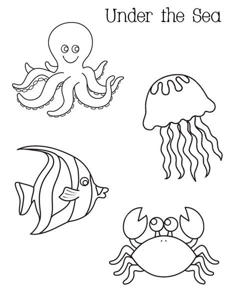 ocean activities    sea coloring pages