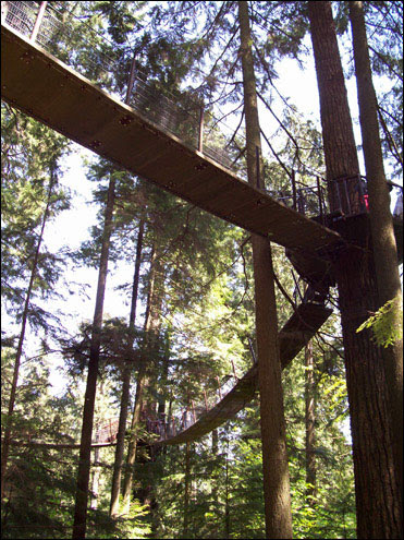 Tree Top Adventure,  Capilano