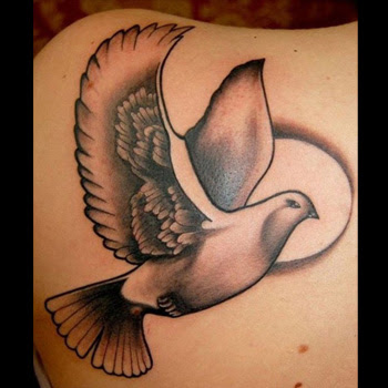 Dove Tattoo Meanings Itattoodesignscom