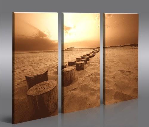 Cap ferret 3 quadri moderni su tela pronti da appendere - Quadri da appendere in bagno ...