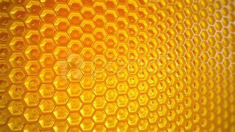 Video: Honeycomb. Honey. Healthy Natural organic
