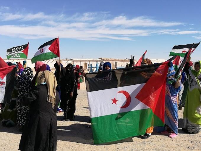 Sáhara Occidental: Lo que se discutirá este 29 de abril en el Consejo de Seguridad sobre la Minurso