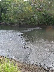 North Pine River. Then and Now.
