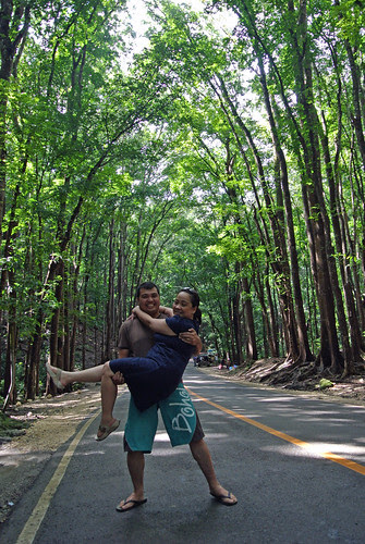 Loboc Man made Forest