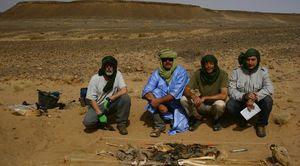Sahara_2013_7_