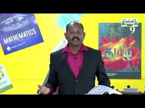 கலைத்தொழில் பழகு Std  11 TM Accountancy வங்கிச் சரிகட்டும் பட்டியல் Kalvi  TV