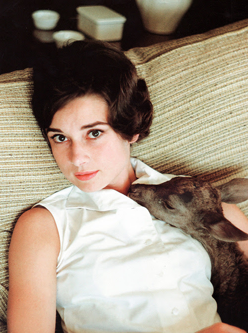 Audrey Hepburn with her deer 'Pippin' photographed by Bob Willoughby