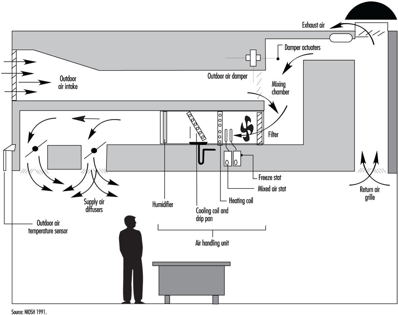 Skoda Octavia Wiring Diagram